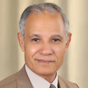 Professor Abdel-Fattah El-Sayed